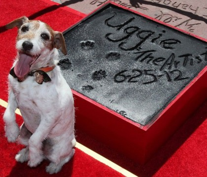 Superstar Uggie leaves his pawtograph at Grumman's Chinese Theater, Los Angeles